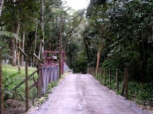 Estrada Rural-SJP